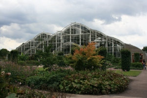 The glasshouse was completed in 2005, so some what new, but stuffed with plants.