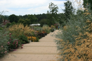 Here is a path leading through the Bowes-Lyon Rose Garden.
