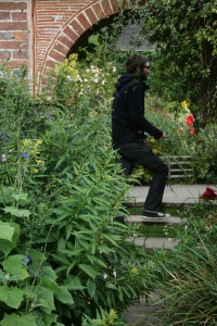 Sean heading into the next garden with Salvia seboana(?) and Cestrum parqui(?) crowding the pathway.