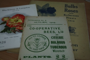 These are the original copies of nursery catalogs from the early 1900's.