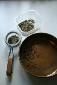 Uncleaned seeds in the clear container and sieve, and clean seeds in the cooper pan.