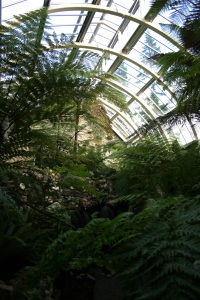 This recently refurbished Victorian fern house is also at RBGE.