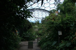 Though many would find it too hot, I actually enjoyed the heat and humidity in the Tropical Biome.