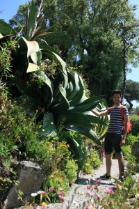 The plants here are just ginormous! I'm (carefully) standing next to an Agave and a few in the garden were blooming with 40ft flower stalks!
