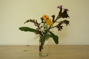 A mini-quiz bouquet from one of the days. From left to right: Digitalis canariensis, Anthropodium cirratum, Tagetes lemmonii, Hymenolepis parviflora, and Wingandia caracasana.